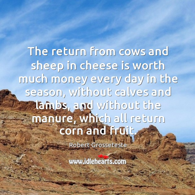 The return from cows and sheep in cheese is worth much money every day in the season Robert Grosseteste Picture Quote