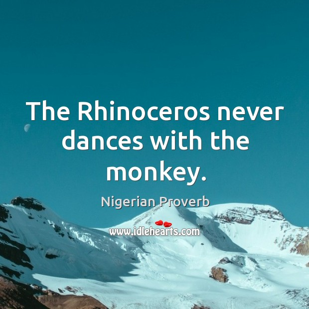 Image, The rhinoceros never dances with the monkey.