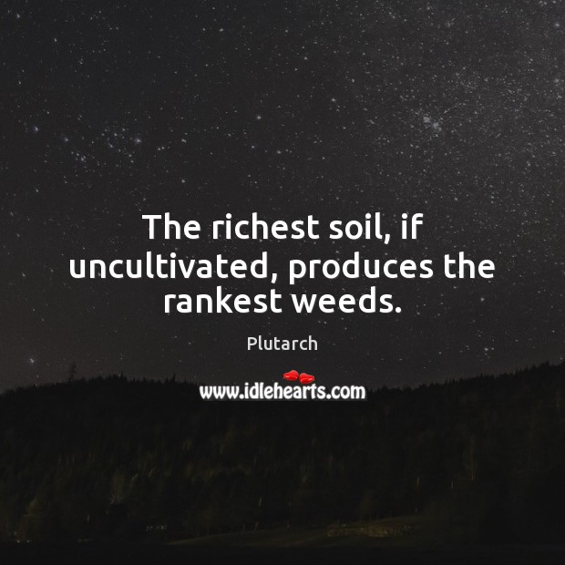 The richest soil, if uncultivated, produces the rankest weeds. Plutarch Picture Quote