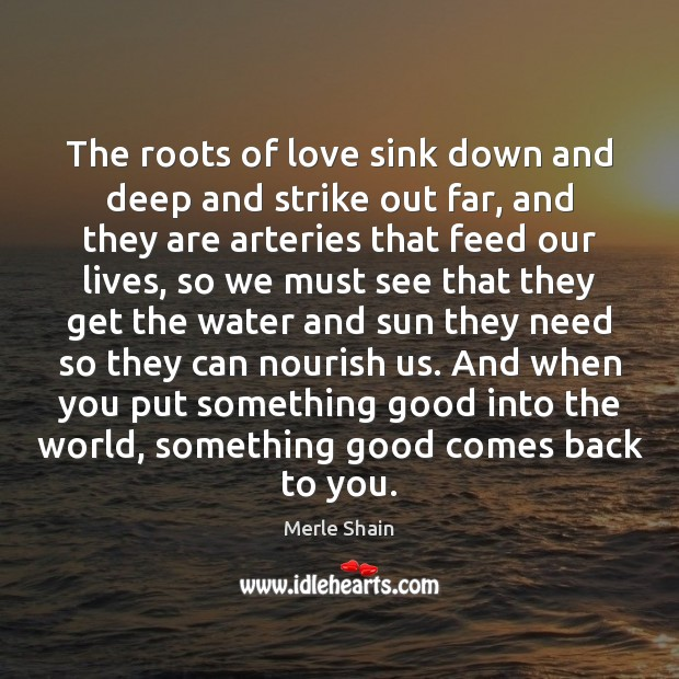 The roots of love sink down and deep and strike out far, Merle Shain Picture Quote