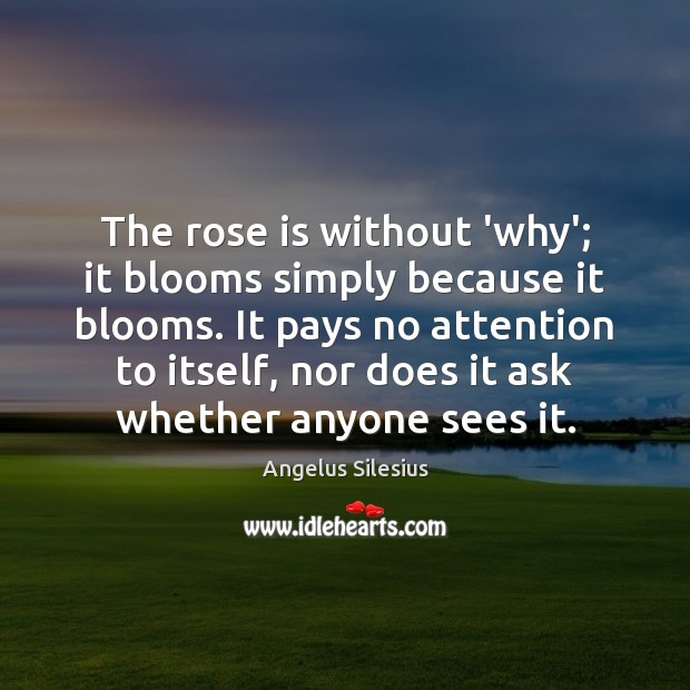 Image, The rose is without 'why'; it blooms simply because it blooms. It