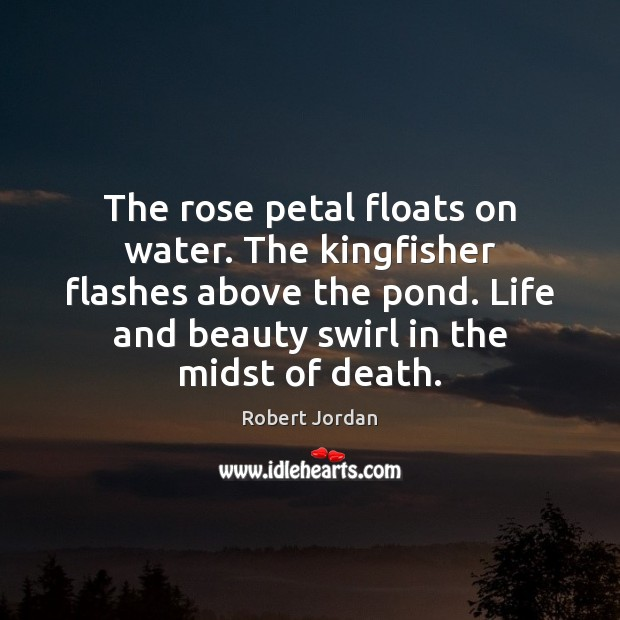 The rose petal floats on water. The kingfisher flashes above the pond. Image