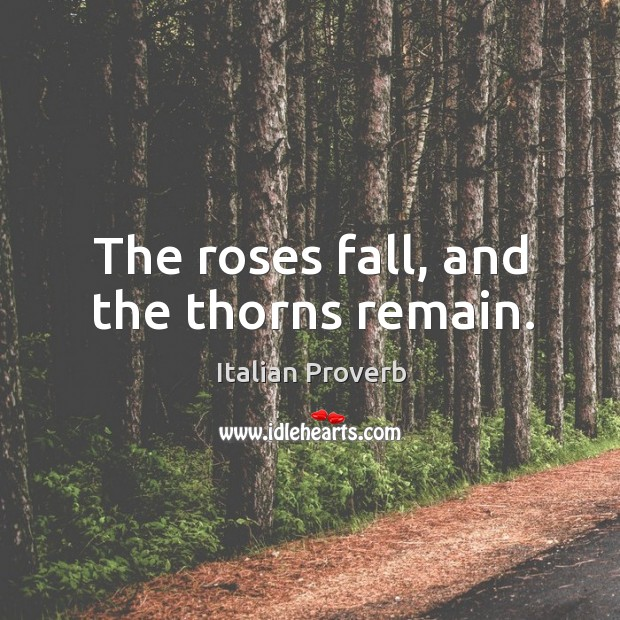 Image, The roses fall, and the thorns remain.