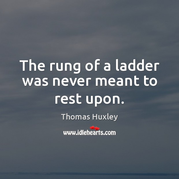 The rung of a ladder was never meant to rest upon. Image