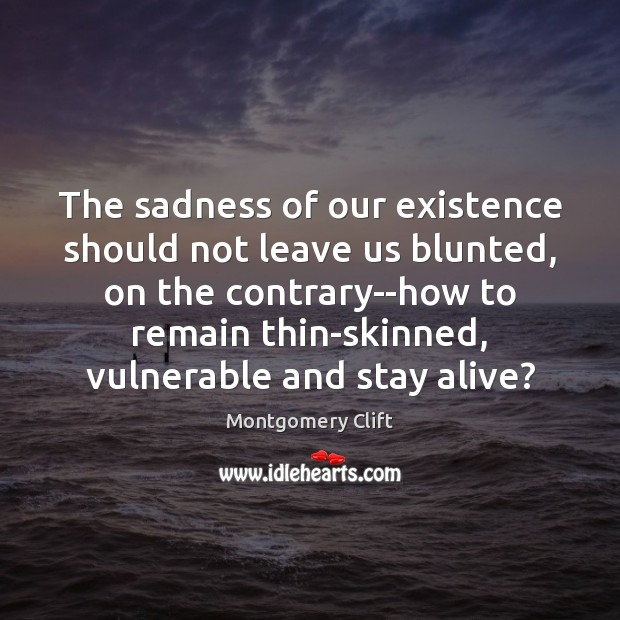 The sadness of our existence should not leave us blunted, on the Image
