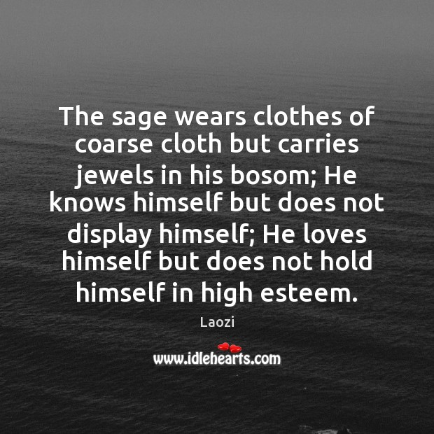 Image, The sage wears clothes of coarse cloth but carries jewels in his