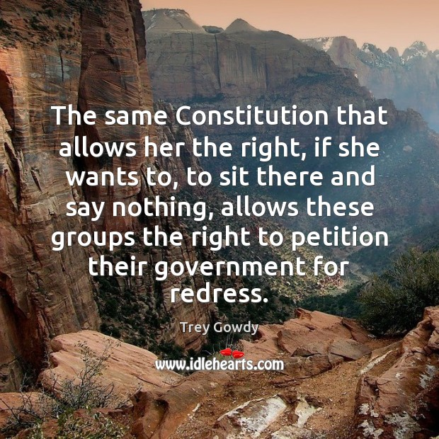 Image, The same Constitution that allows her the right, if she wants to,