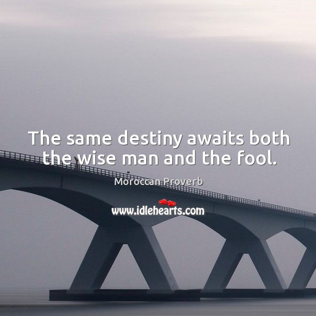 The same destiny awaits both the wise man and the fool. Moroccan Proverbs Image