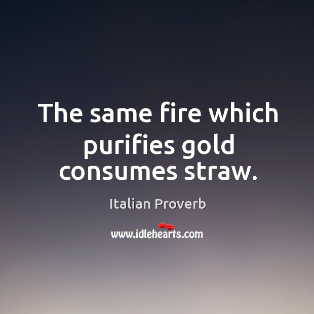Image, The same fire which purifies gold consumes straw.