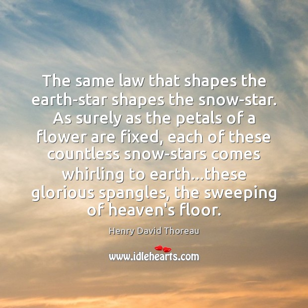 Image, The same law that shapes the earth-star shapes the snow-star. As surely