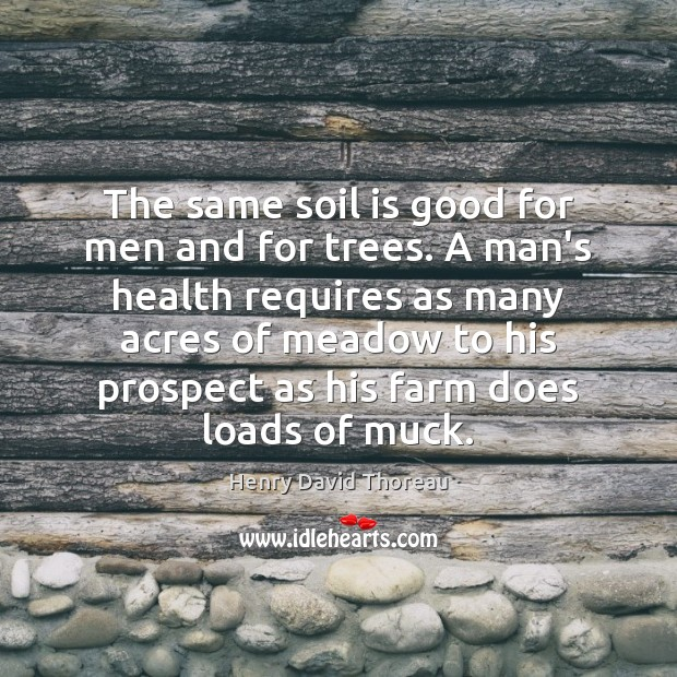 The same soil is good for men and for trees. A man's Farm Quotes Image
