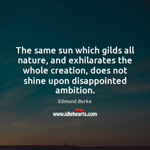 Image, The same sun which gilds all nature, and exhilarates the whole creation,