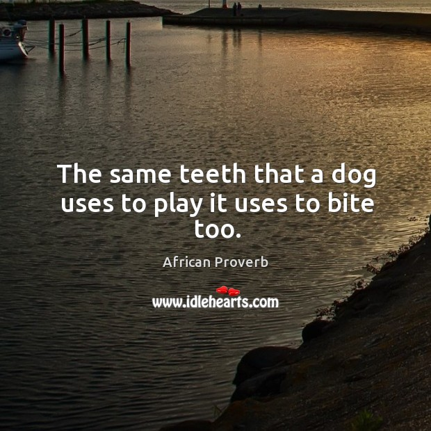 Image, The same teeth that a dog uses to play it uses to bite too.