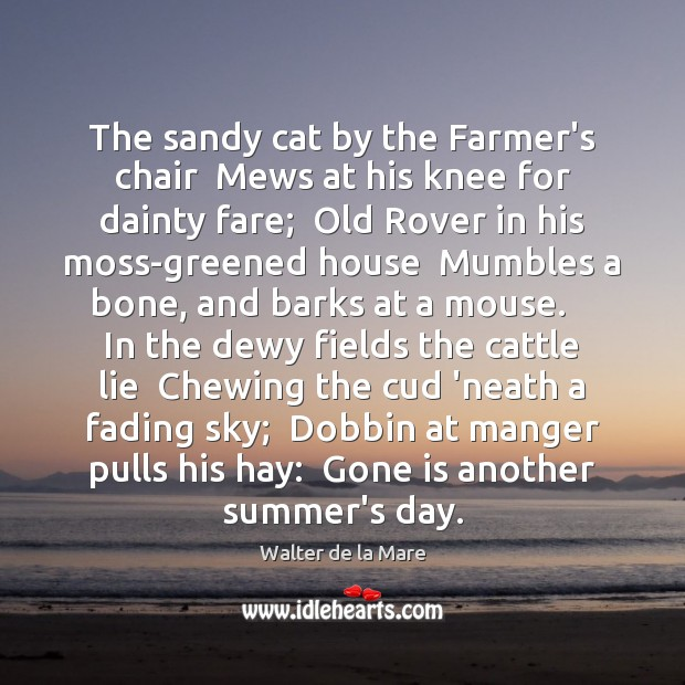 The sandy cat by the Farmer's chair  Mews at his knee for Image