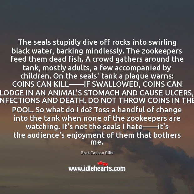The seals stupidly dive off rocks into swirling black water, barking mindlessly. Bret Easton Ellis Picture Quote