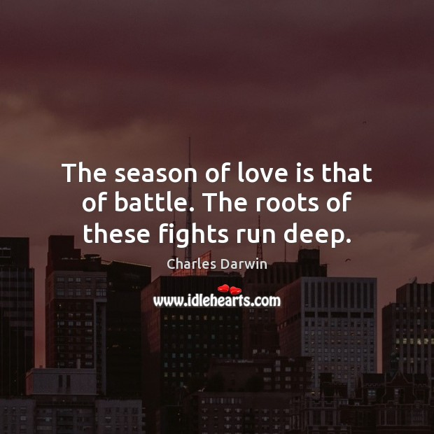 The season of love is that of battle. The roots of these fights run deep. Image