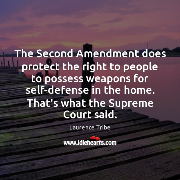 Image, The Second Amendment does protect the right to people to possess weapons