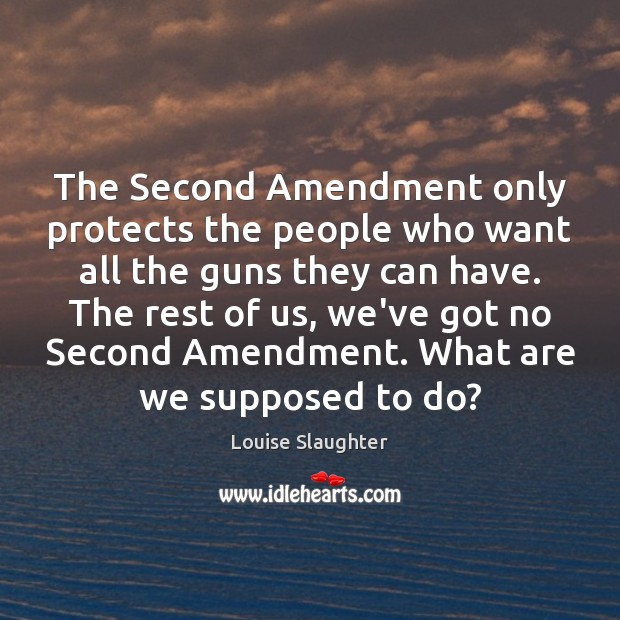 The Second Amendment only protects the people who want all the guns Image
