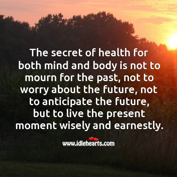 The secret of health for both mind and body is not to mourn for the past, not to worry about the future Image