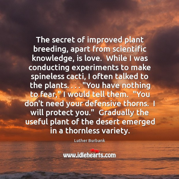 The secret of improved plant breeding, apart from scientific knowledge, is love. Image