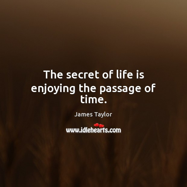 The secret of life is enjoying the passage of time. James Taylor Picture Quote