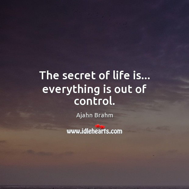 Image, The secret of life is… everything is out of control.