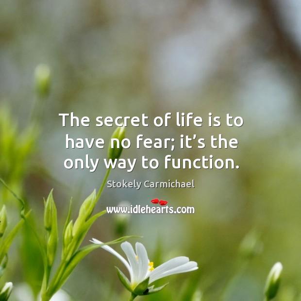 The secret of life is to have no fear; it's the only way to function. Image