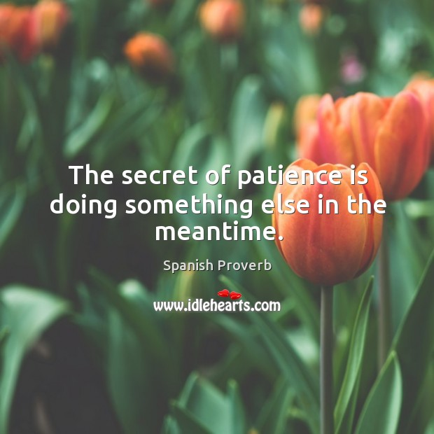 The secret of patience is doing something else in the meantime. Image