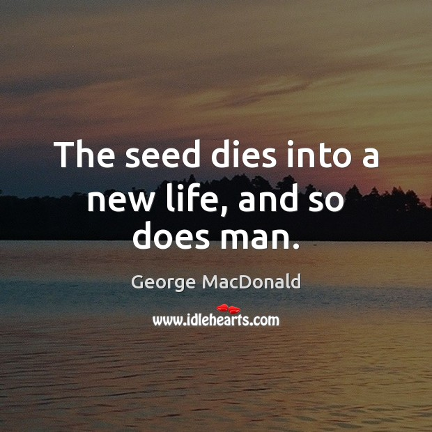 Image, The seed dies into a new life, and so does man.