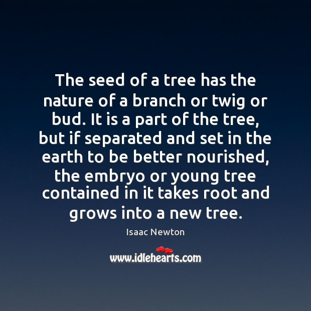 The seed of a tree has the nature of a branch or Image