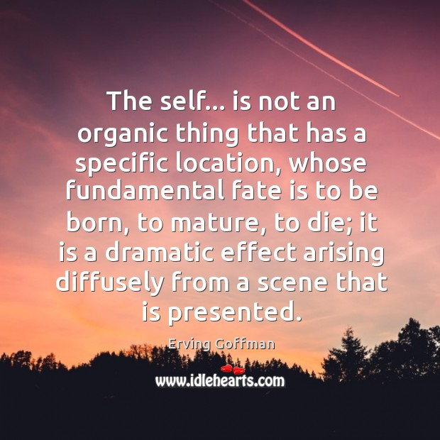 The self… is not an organic thing that has a specific location, Image