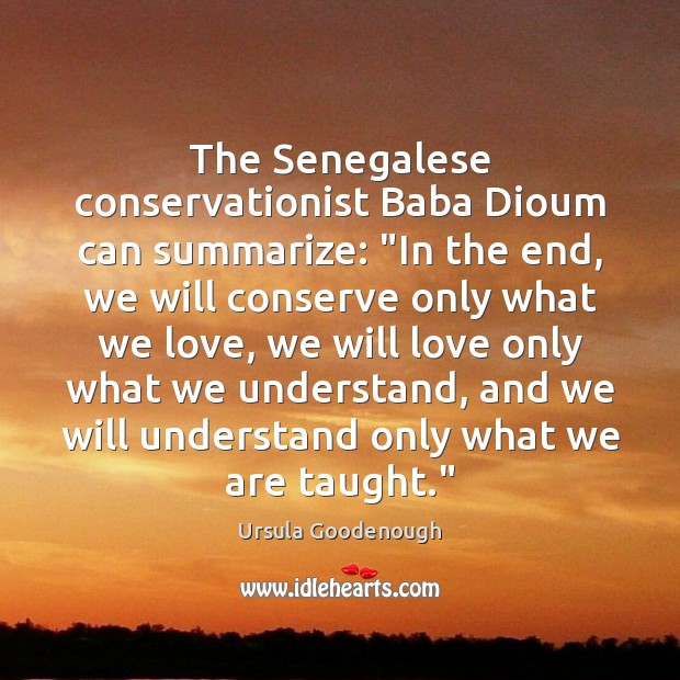 """Image, The Senegalese conservationist Baba Dioum can summarize: """"In the end, we will"""