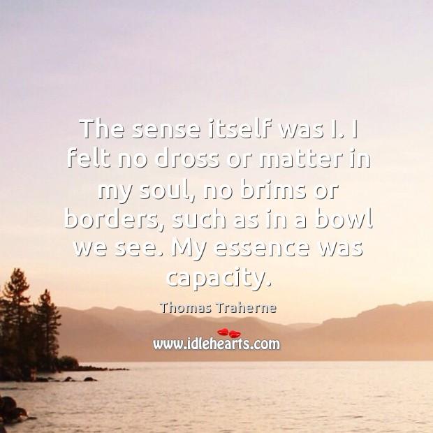 The sense itself was I. I felt no dross or matter in Image