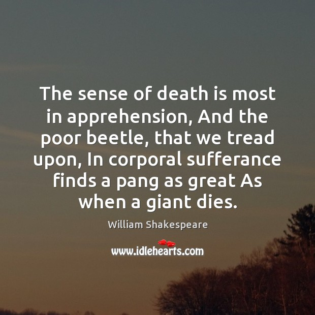 The sense of death is most in apprehension, And the poor beetle, Image