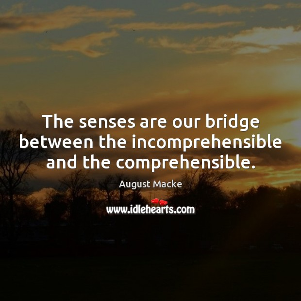 The senses are our bridge between the incomprehensible and the comprehensible. Image