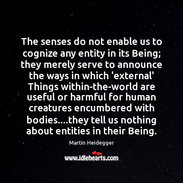 The senses do not enable us to cognize any entity in its Martin Heidegger Picture Quote