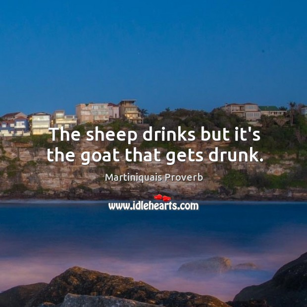 The sheep drinks but it's the goat that gets drunk. Martiniquais Proverbs Image
