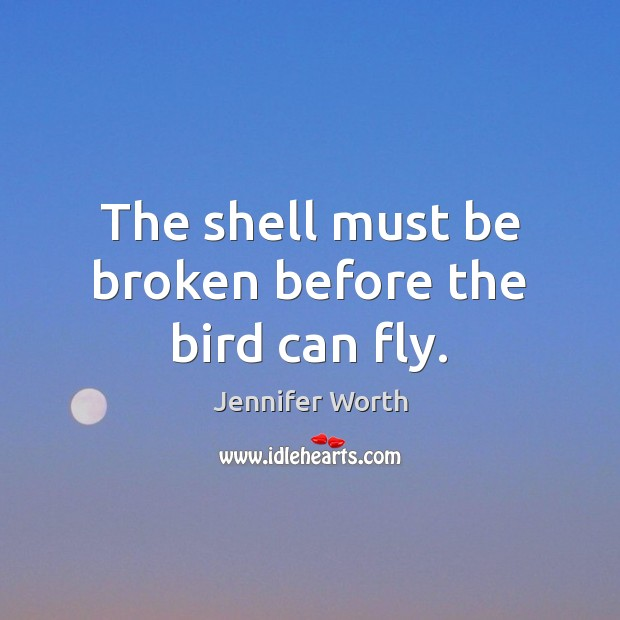 The shell must be broken before the bird can fly. Image