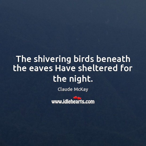 The shivering birds beneath the eaves Have sheltered for the night. Image