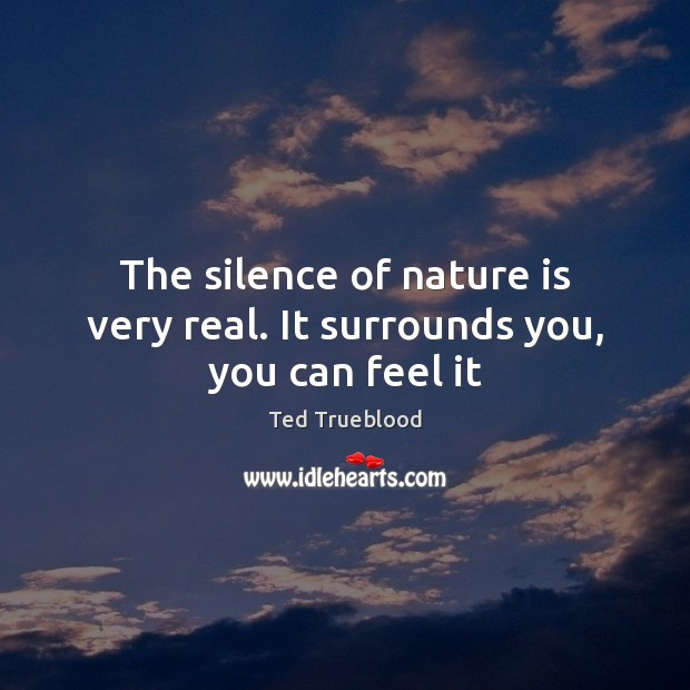 The silence of nature is very real. It surrounds you, you can feel it Image