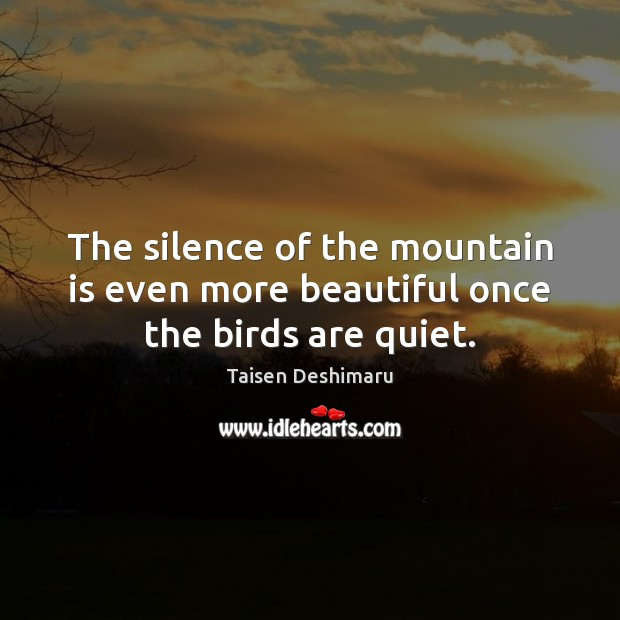The silence of the mountain is even more beautiful once the birds are quiet. Image