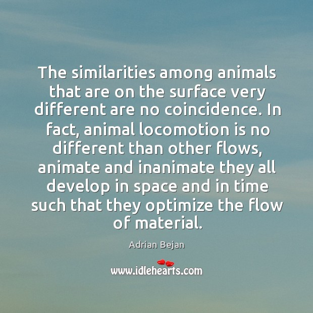 Image, The similarities among animals that are on the surface very different are