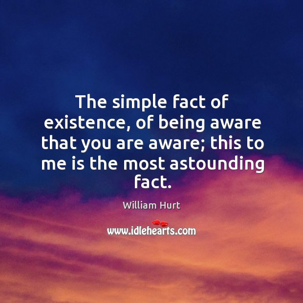 The simple fact of existence, of being aware that you are aware; this to me is the most astounding fact. William Hurt Picture Quote