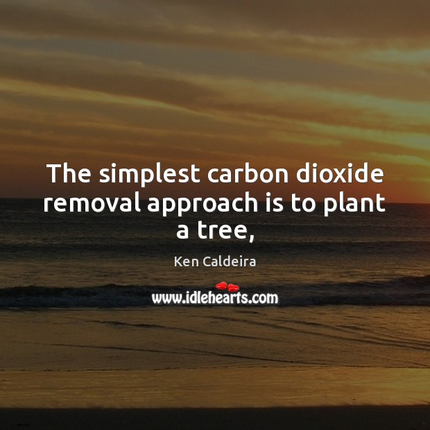 Image, The simplest carbon dioxide removal approach is to plant a tree,
