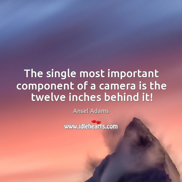 Image, The single most important component of a camera is the twelve inches behind it!