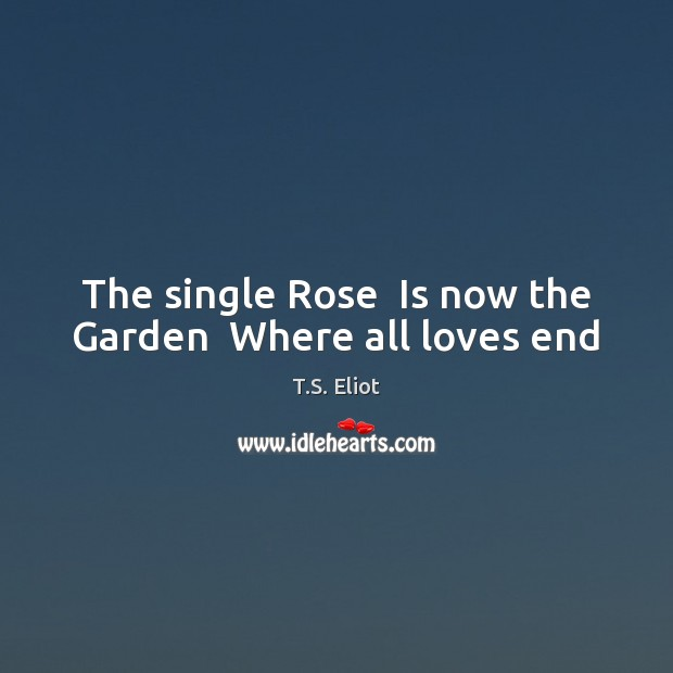 Image, The single Rose  Is now the Garden  Where all loves end