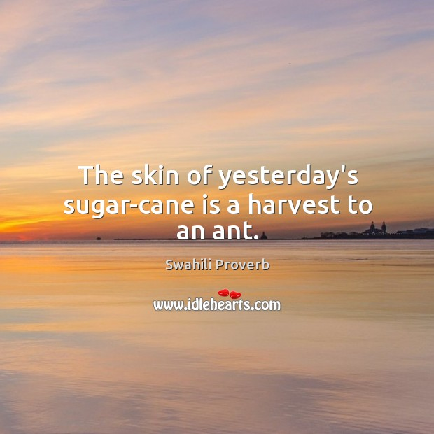 The skin of yesterday's sugar-cane is a harvest to an ant. Swahili Proverbs Image