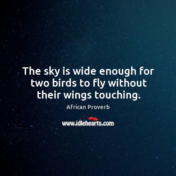 Image, The sky is wide enough for two birds to fly without their wings touching.