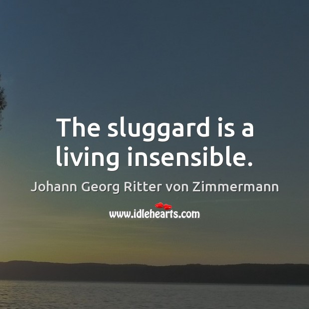 The sluggard is a living insensible. Johann Georg Ritter von Zimmermann Picture Quote