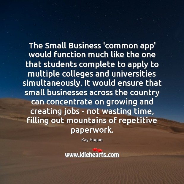 The Small Business 'common app' would function much like the one that Image